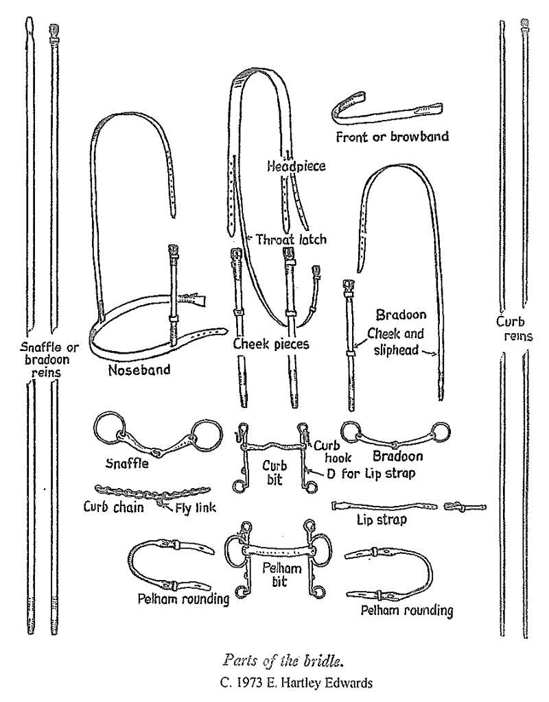 saddle  u0026 bridle repair